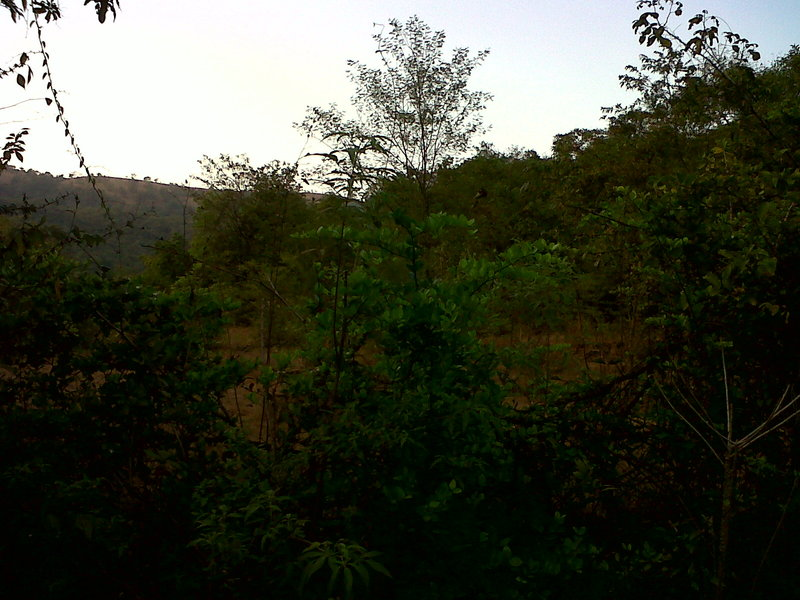 Land for sale in Maharashtra, Rs one lakh per Acre