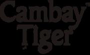 Buy Marinated Fish Online In Mumbai At Best Price  | Cambay Tiger