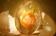 Egg Donor Profiles & Cost In Mumbai,  India
