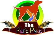 DOG PUPPIES -ERSIAN KITTEN -THE PETS PARK -9021644447