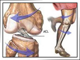 Knee Surgeon in Mumbai | Dr. Amyn Rajani