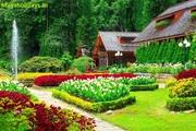 Book Bangalore Mysore ooty Package