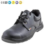 Alloy Safety Shoes