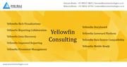 Yellowfin Consulting Mumbai Pune Bangalore Delhi Chennai India