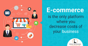 Develop Ecommerce Website for your Business in Low budget