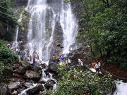 Book Amboli Waterfall Trip Just ₹ 2500 Only Book Now Get 20% Discount