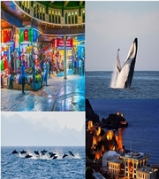 Mesmerising Muscat with Amazing Places