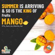 Buy Fresh Organic Mango Online in Mumbai