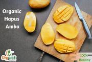 Orgpick Organic Alphonso Mango | Hapus Mango
