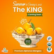 Buy Certified Organic Alphonso Online in Pune