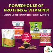 Buy Certified Organic Lentil and Pulses Online