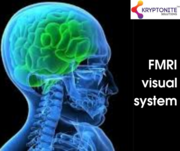 fMRI visual system - Kryptonite Solutions