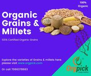Healthy Organic Grains and Organic Millets Online