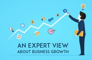 An Expert Views About Business Growth