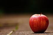 apple fruit exporter