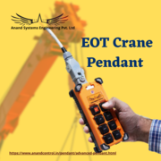 Top EOT crane pendant manufacturer in Mumbai